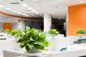 Having good lighting can be a major security enhancement for your business.